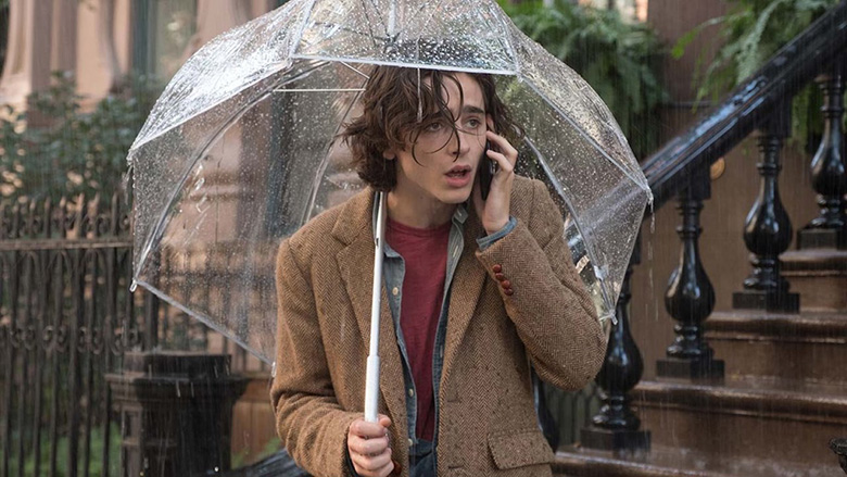 A Rainy Day in New York 2019 Hollywood Comedy Movie